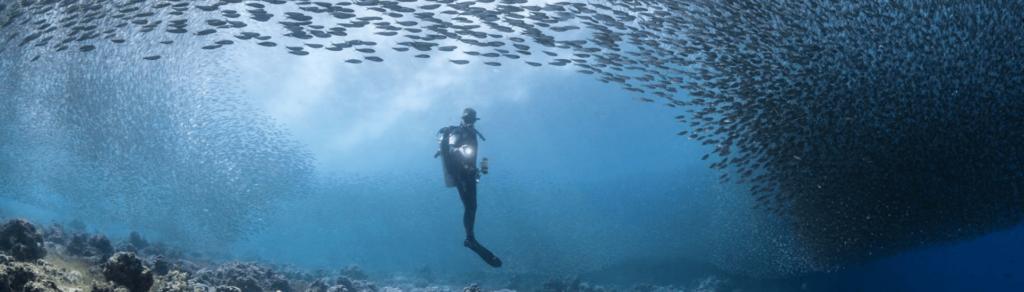 buceador-pesca-submarina