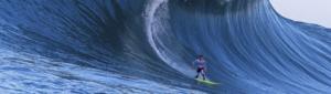 surfista-surfeando-ola
